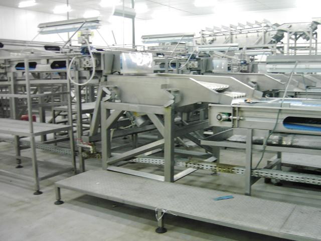 Mechanical equipment of a canning industry