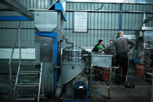 Picture of sector Olive Mill